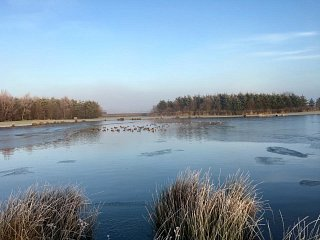 Weekly Fishing Report - Frost to the Fore at Lochter